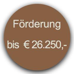 Förderung 26.250 Euro